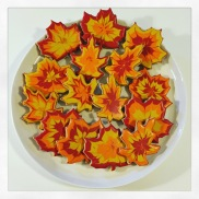 fall-cookies-houston